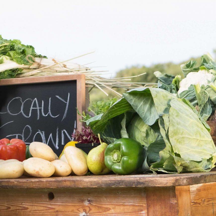 Organics Reduces Health Risks
