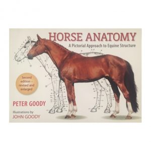 Horse Anatomy: Second Edition