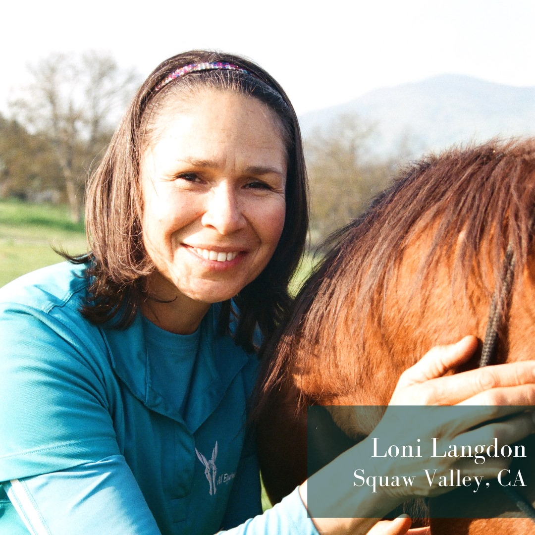 Loni Langdon, MMCP, Mentor, Coach, Instructor